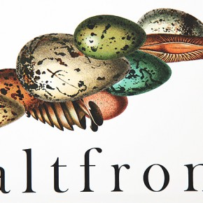 Saltfront: New Literary Journal Explores Human Habit(at)s