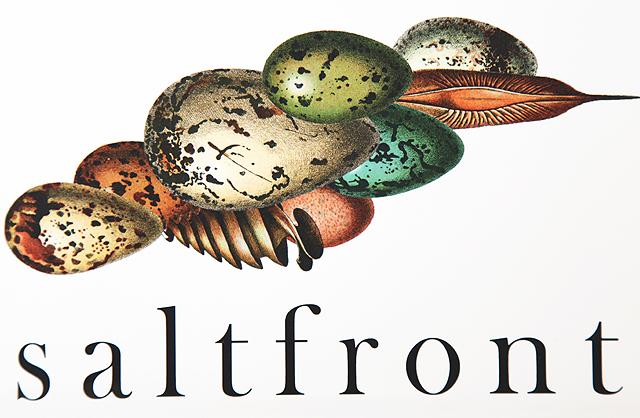 saltfront_blog