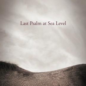 Stumbling in the Dark: Meg Day's Last Psalm at Sea Level