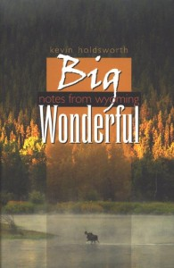 big wonderful book cover