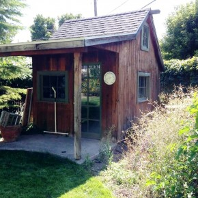 What's New: Toni Youngblood's new plans for an old shed in 2017